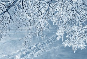 Синоптики попередили про сніголавинну небезпеку у Карпатах