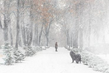 Сильний сніг та хуртовини: в Україну повертається негода