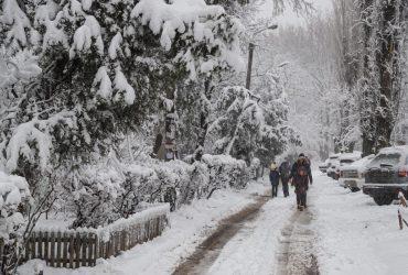 Сильный снегопад в Одессе: в город запретили въезд фур, коммунальщики работают в усиленном режиме (фоторепортаж, видео)