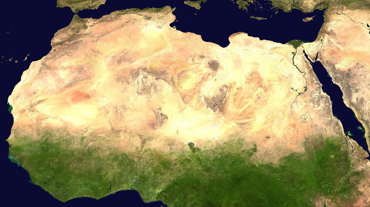 Ученые выяснили, что раньше на территории Сахары была растительность \ Википедия