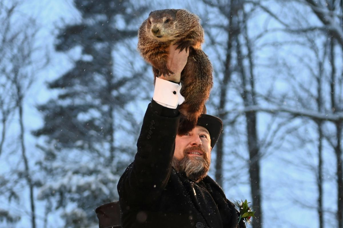 Цього року Великий Філ спрогнозував, що зима триватиме ще 6 тижнів / фото REUTERS