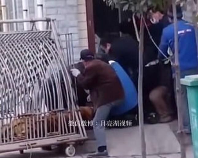 На записи видно, как группа коллег пытается высвободить ногу мужчины/ скриншот из видео