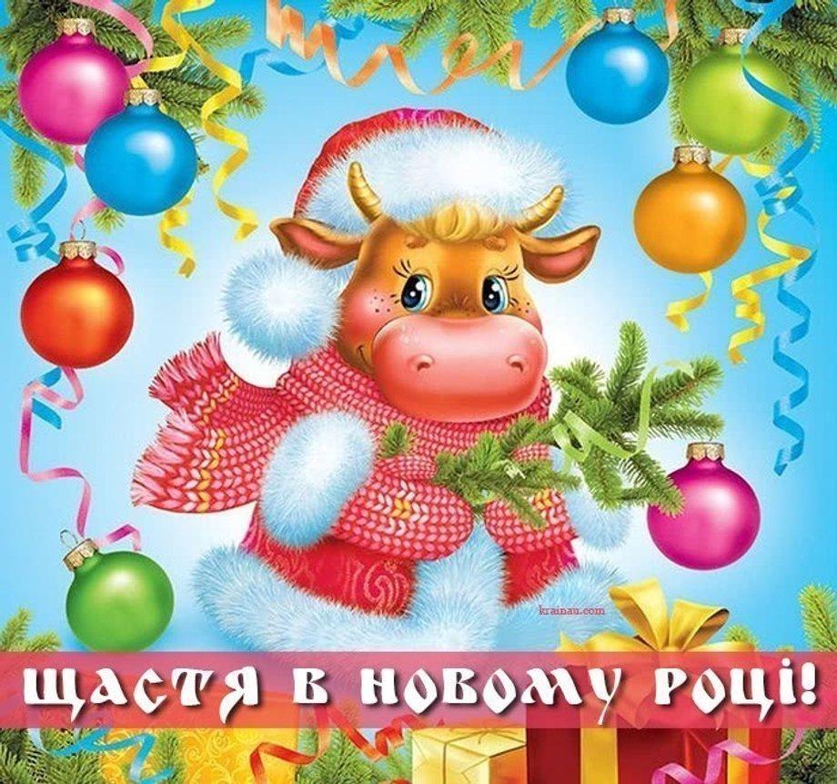 Новый год в Китае / фото krainau.com