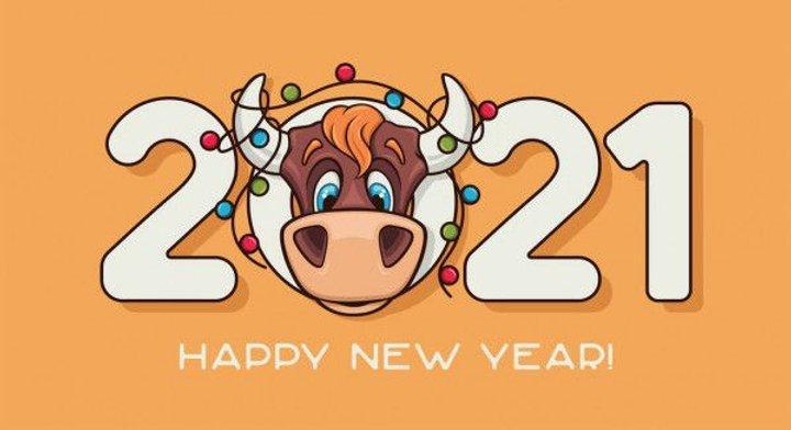 Китайский Новый год / фото krainau.com