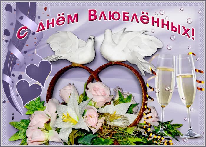 С Днем святого Валентинадевушке/ фото otkritkiok.ru