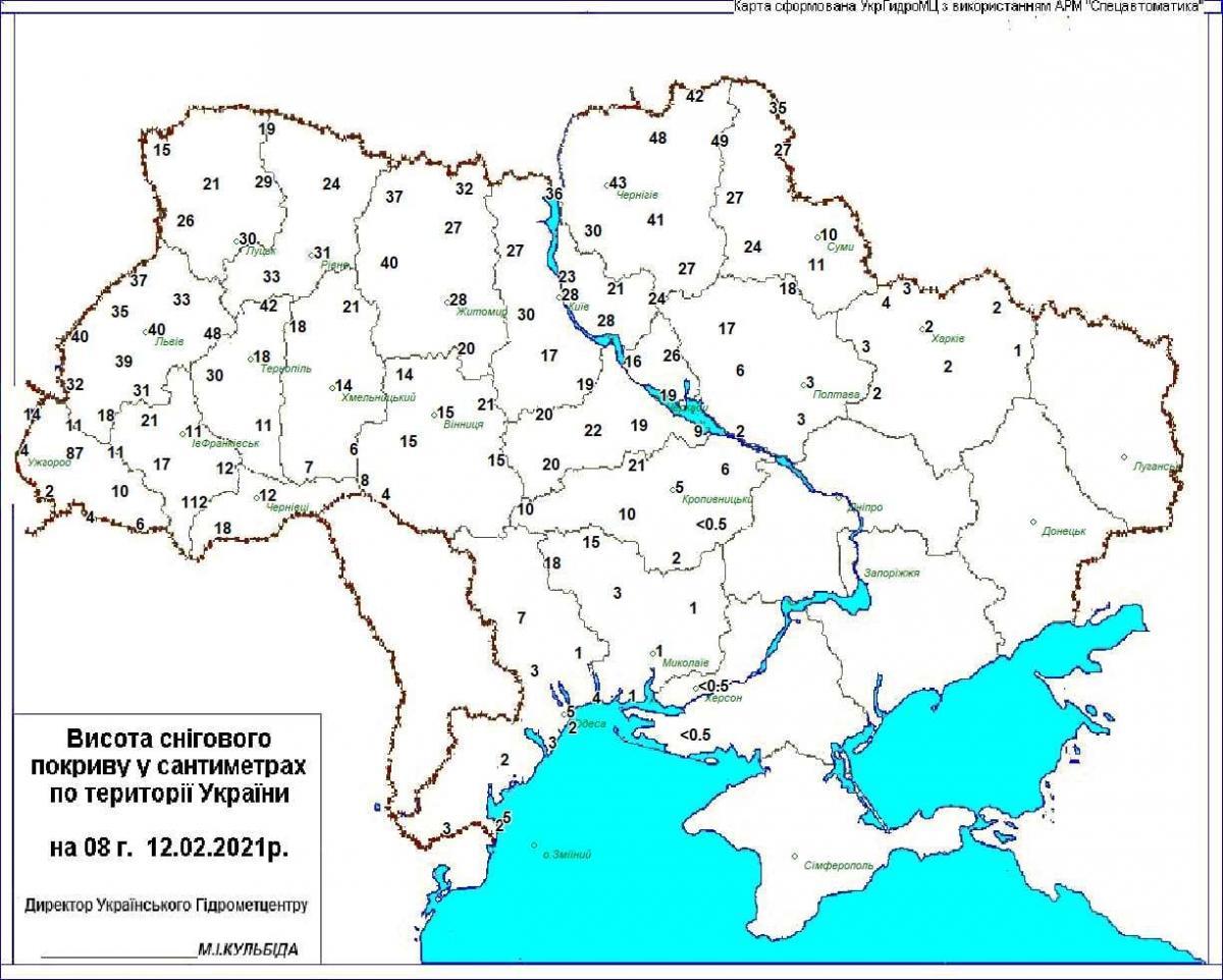Карта осадков 12 февраля / Фото: Укргидрометцентр