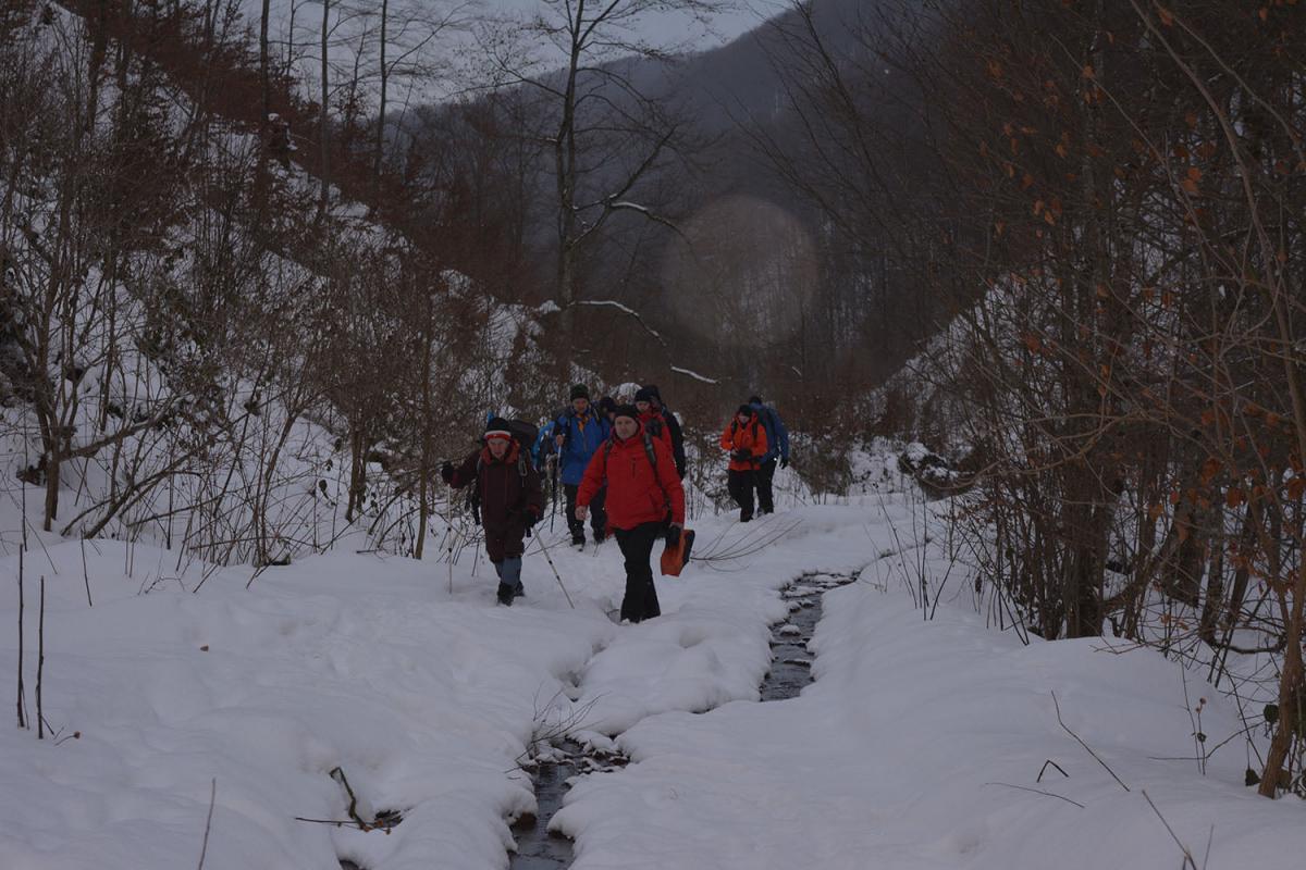 Туриста у Карпатах шукають вже третю добу / фото facebook.com/DsnsZakarpattya