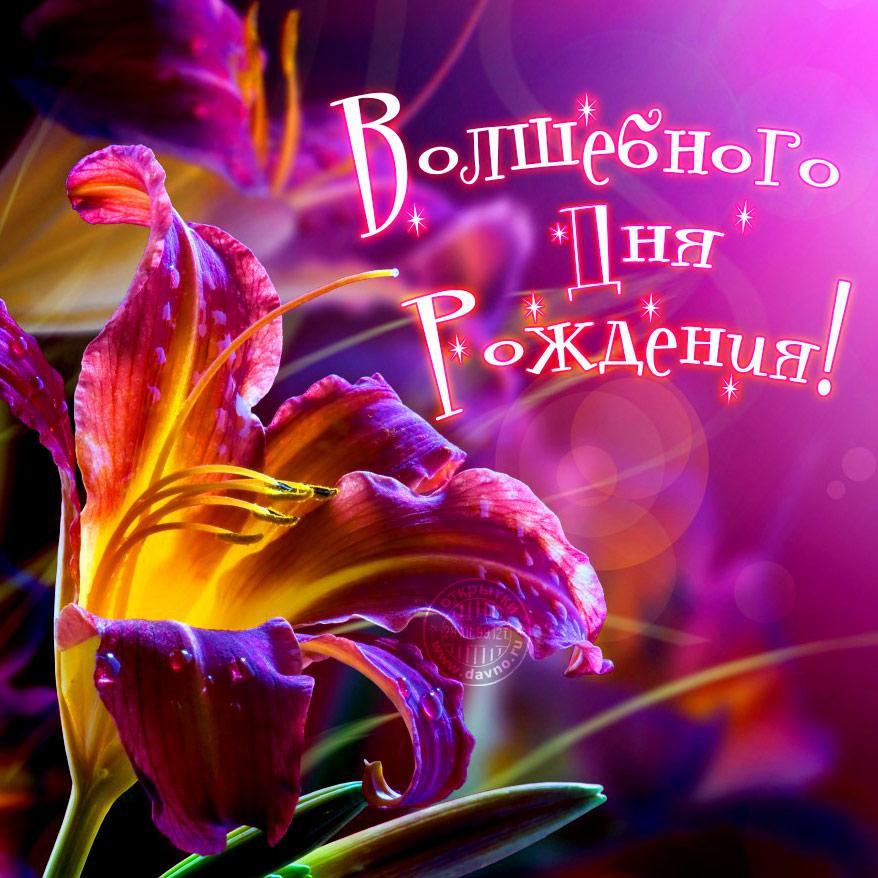 Поздравления с днем рождения женщине / фото www.davno.ru