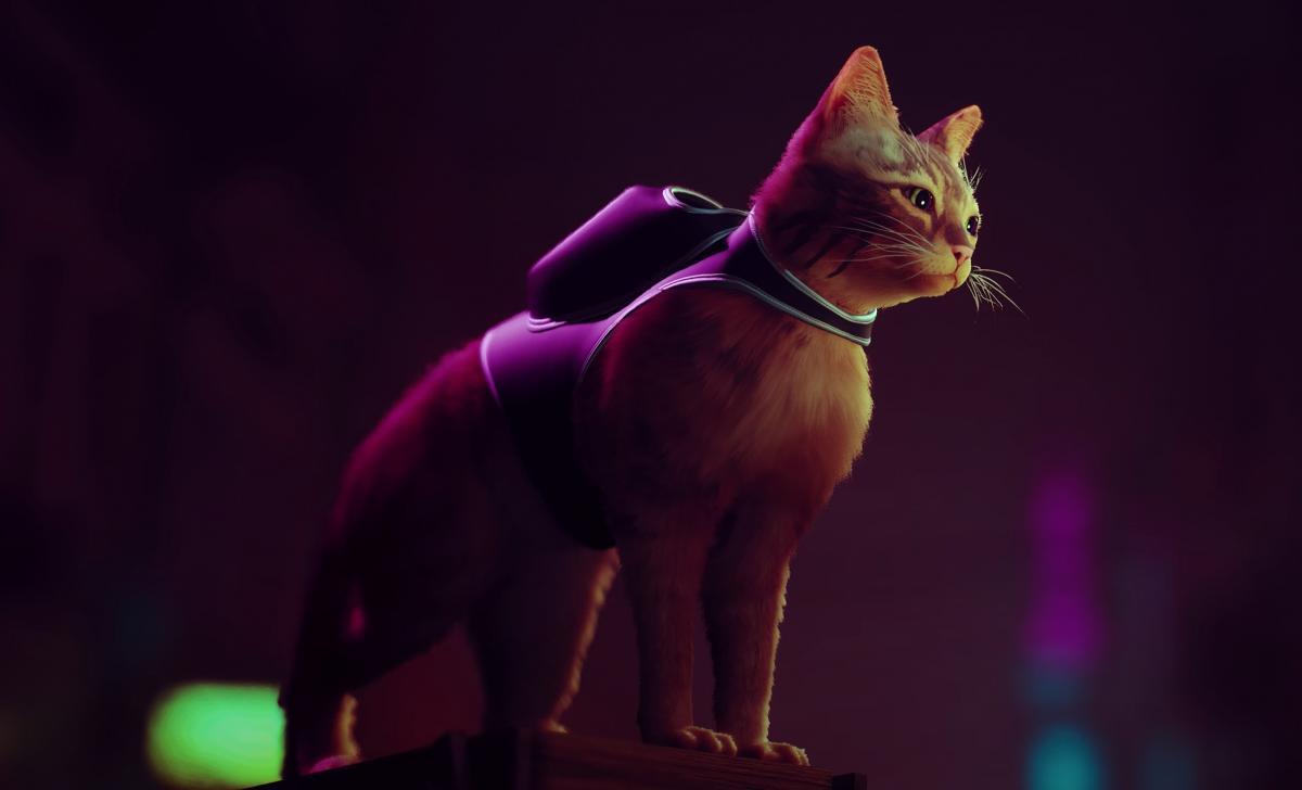 Stray– одна из самых интригующих инди-игр этого года /фото BlueTwelve Studio