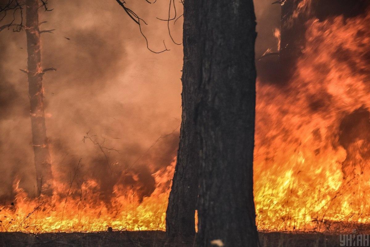 В Україні найближчими днями збережеться надзвичайний рівень пожежної небезпеки / фото УНІАН