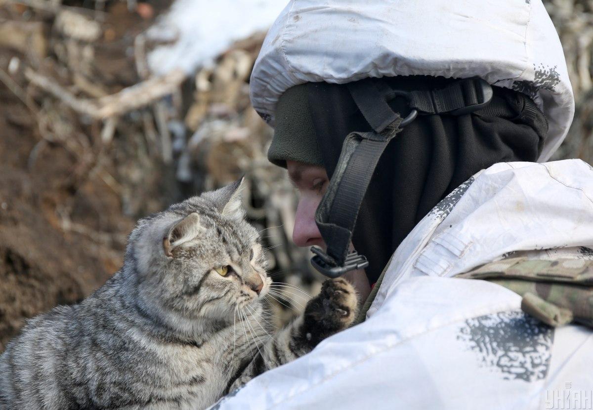 На Донбасі травмовано воїна ЗСУ / УНІАН/ Анатолій Степанов
