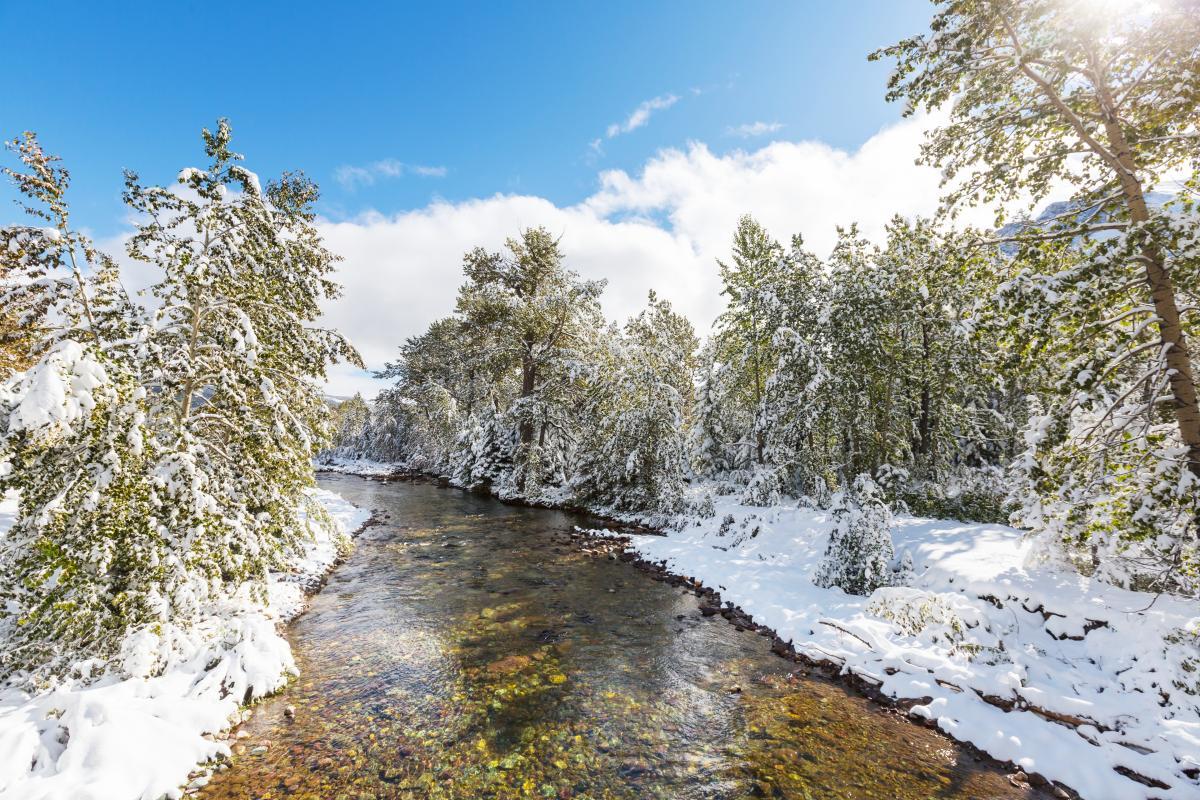 В Україні поступово починається весна / Фото ua.depositphotos.com