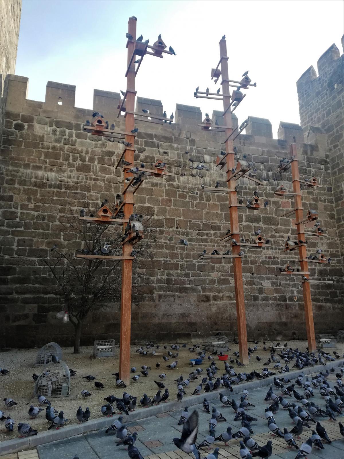 Захист від голубів біля замку Кайсері / фото Марина Григоренко
