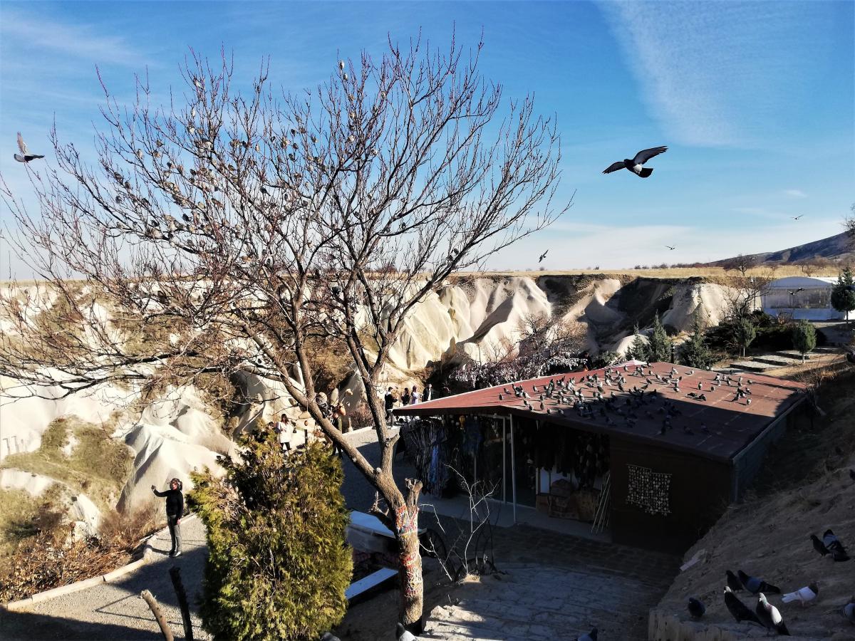 Долина голубів в Каппадокії / фото Марина Григоренко