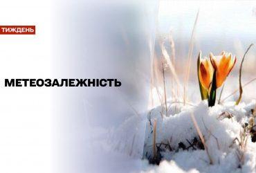 Новини тижня: у Німеччині зафіксували рекордний температурний стрибок, а в Україні почалась весна