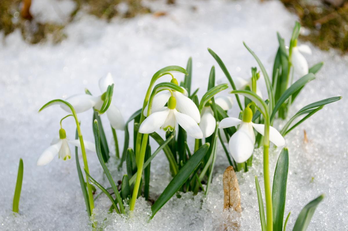 На этой неделе ожидается скачок температуры / Фото ua.depositphotos.com