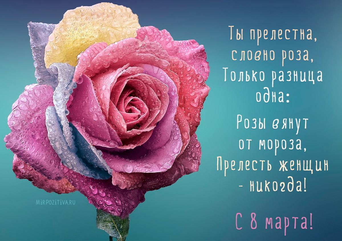Картинки та листівки з 8 березня / mirpozitiva.ru