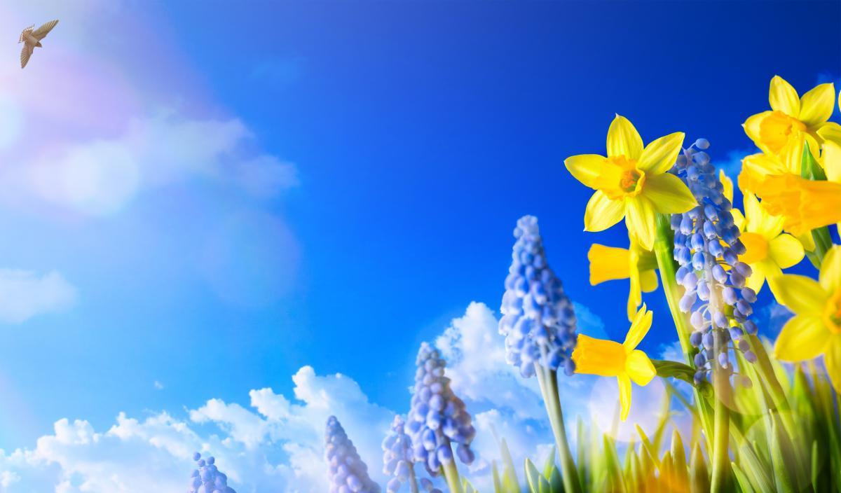 Вже в кінці тижня українців потішить весняне тепло / Фото ua.depositphotos.com