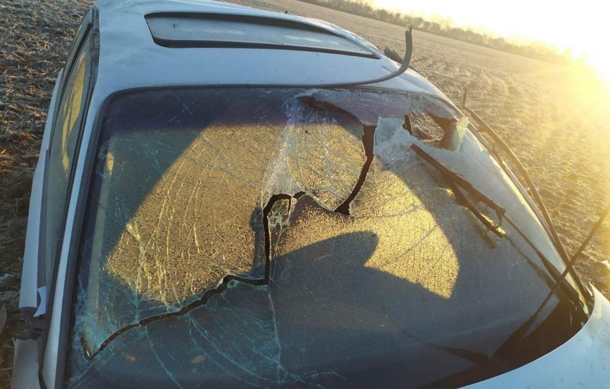 Полиция предполагает, что водитель превысил скорость и не справился с управлением / фото Национальная полиция