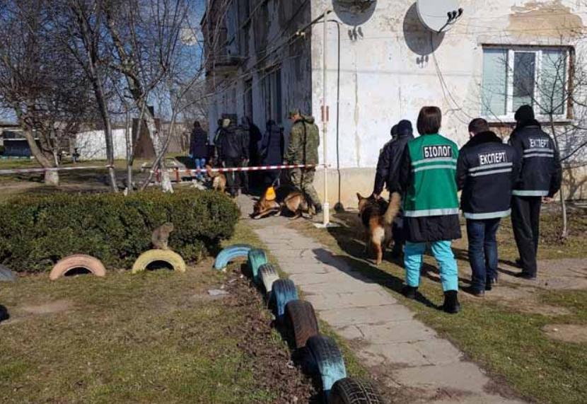 Місце, де знайшли тіло 7-річної Марійки Борисової / фото newday.kherson.ua