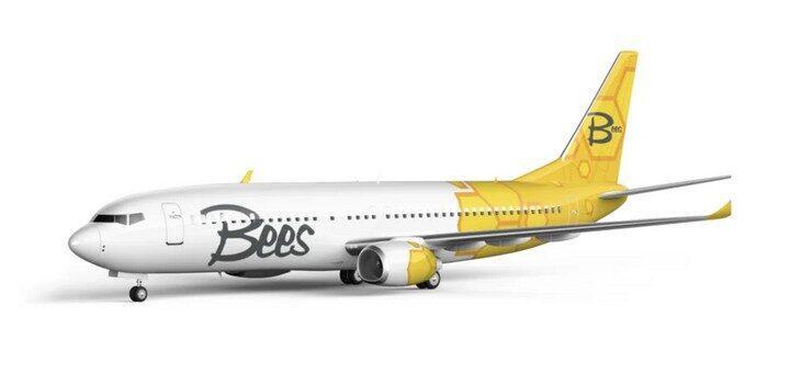 Сейчас в Украине уже находится один самолет авиакомпании / фото bees.aero