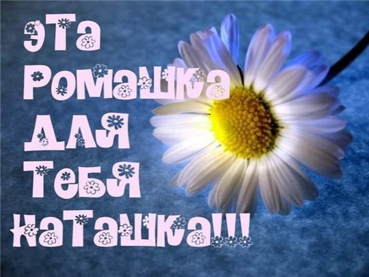 Картинки та листівки з Днем Наталії / chtomnepodarit.ru