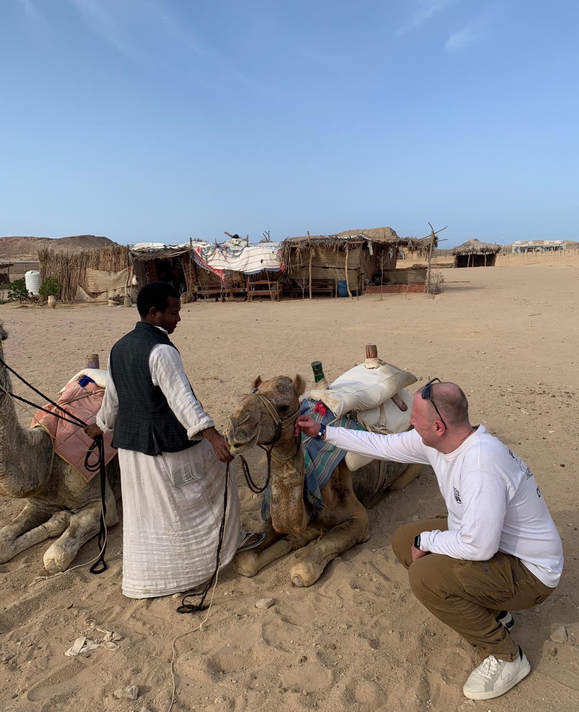 Египетские верблюды / фото автора