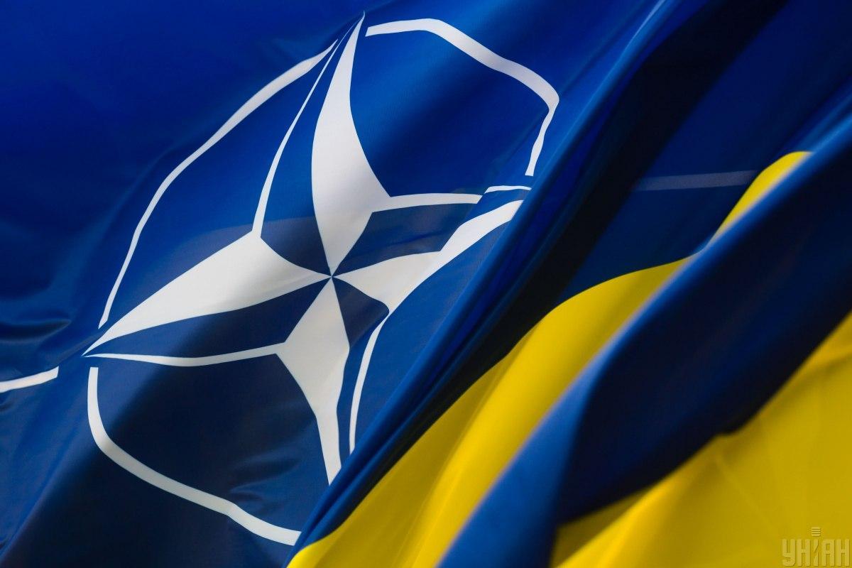 Зеленский заявил, что вопрос вступления в НАТО надо решать немедленно \ фото УНИАН