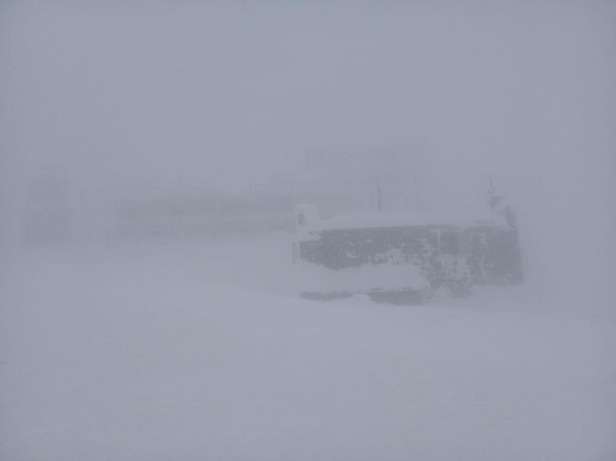 Карпаты заносит снегом / Фото facebook.com/chornogora.rescue112