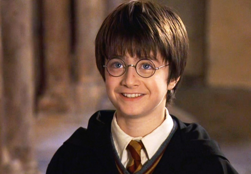 Мужчина представился Гарри Поттером в документах / скриншот