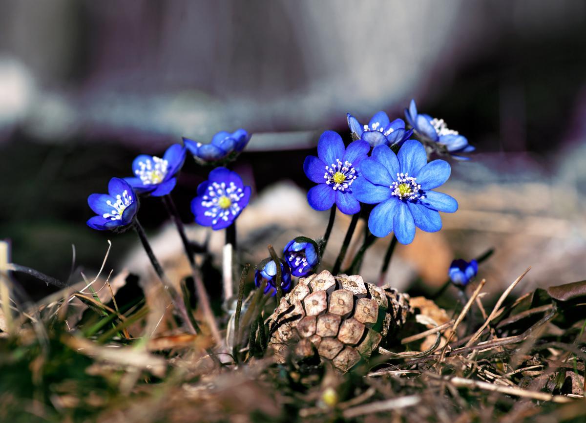 Завтра в Украине значительно потеплеет / Фото ua.depositphotos.com