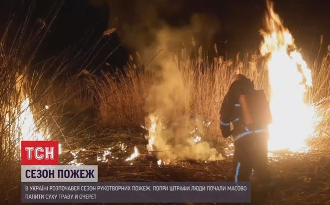 Сезон рукотворных пожаров стартовал в Украине / скриншот видео