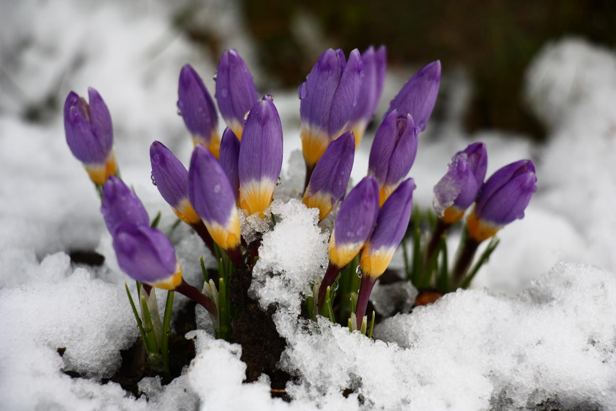 Завтра все еще сохранится прохладная погода / Фото ua.depositphotos.com