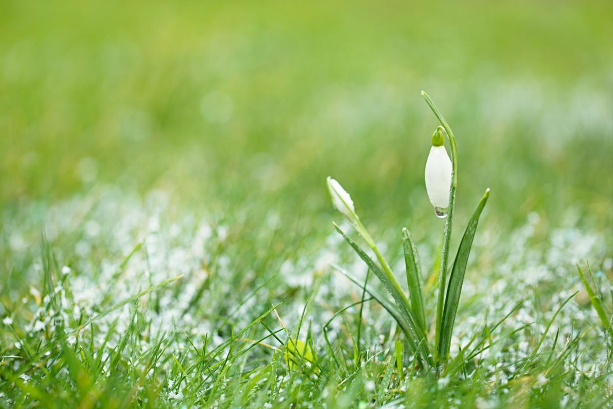 Во вторник местами ожидаются снегопады / Фото ua.depositphotos.com