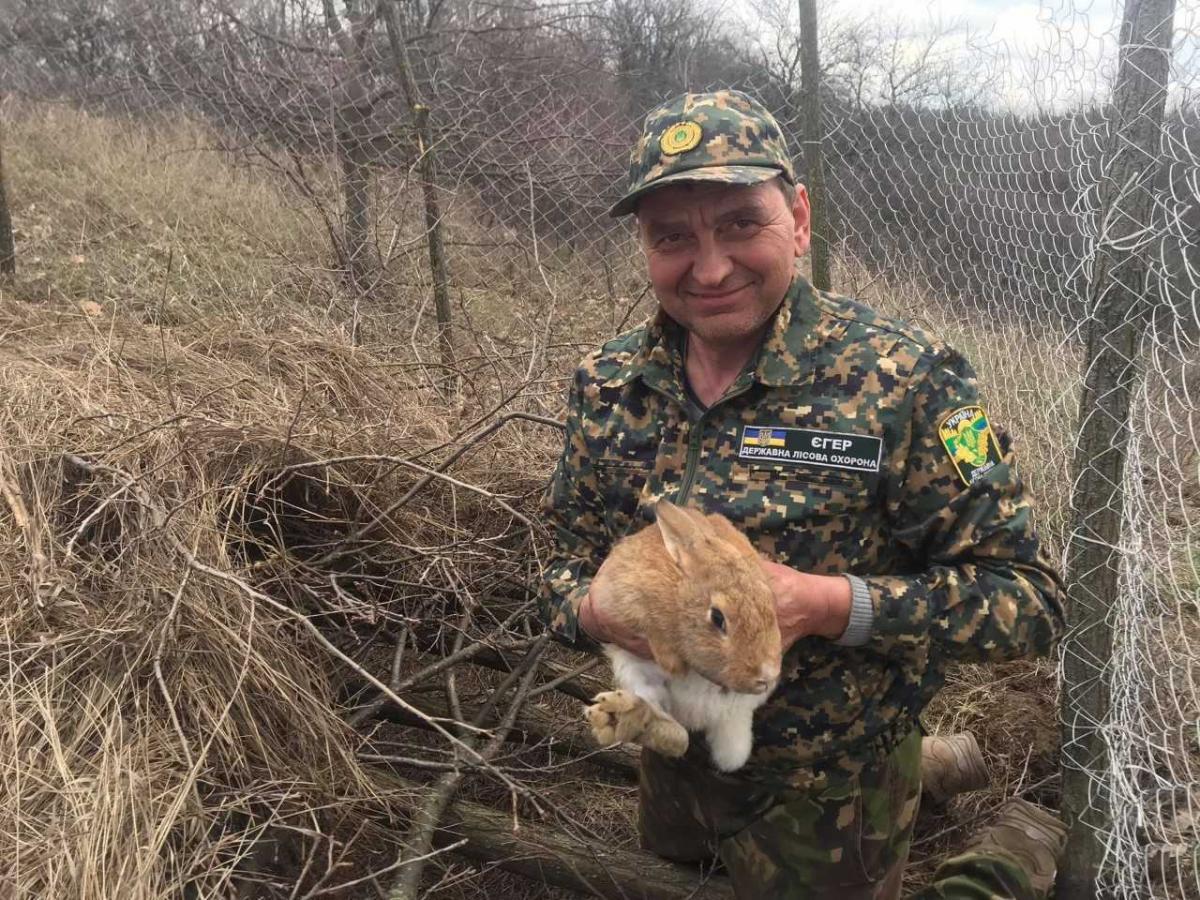 В природу выпустили 8 самочек и 2 самца / фото Олега Булашева