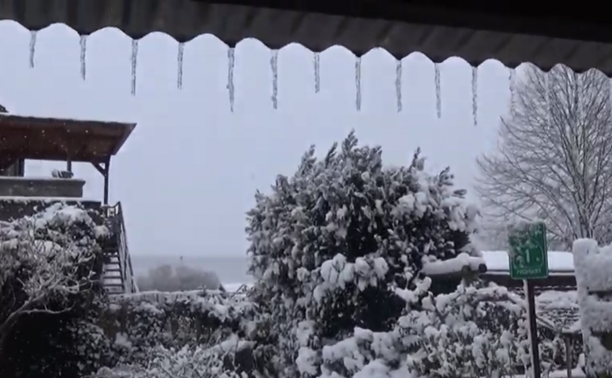 В Брюсселе выпал снег / Скриншот
