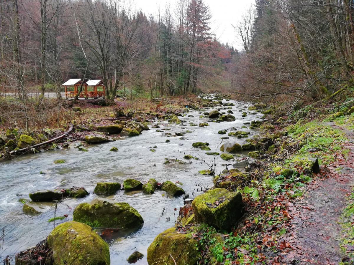 Река на пути к водопаду Каменка / фото Марина Григоренко