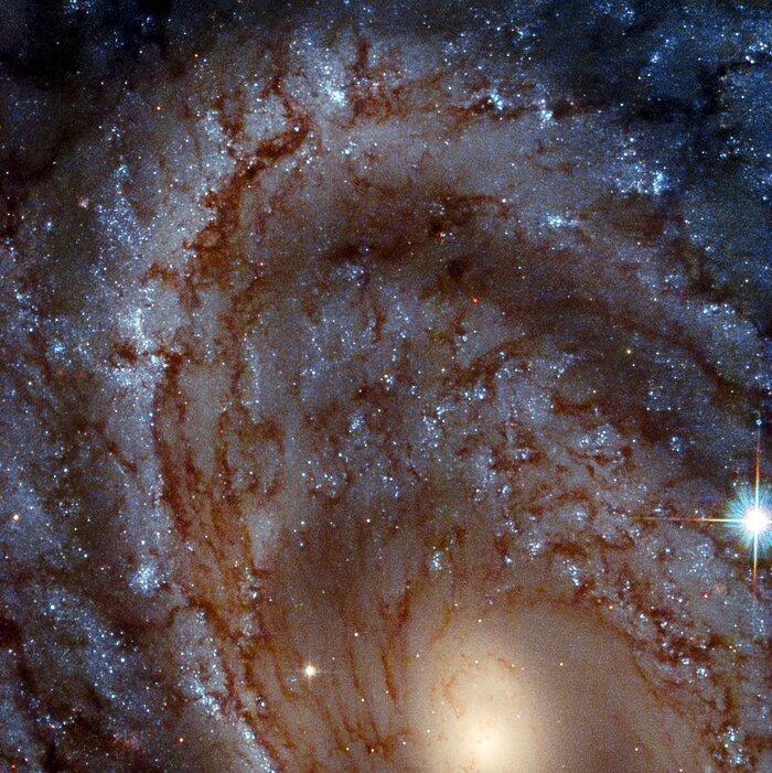 Ця красива галактика знаходиться в 100 млн світлових років від нас / фото ESA / Hubble & NASA, J. Maund