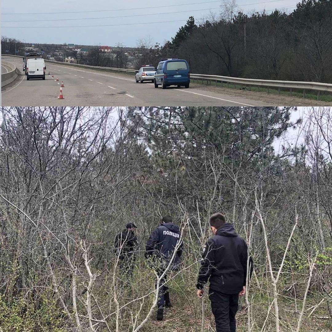 Труп женщины обнаружен возле села Алтестово / фото facebook.com/alex.z.awg