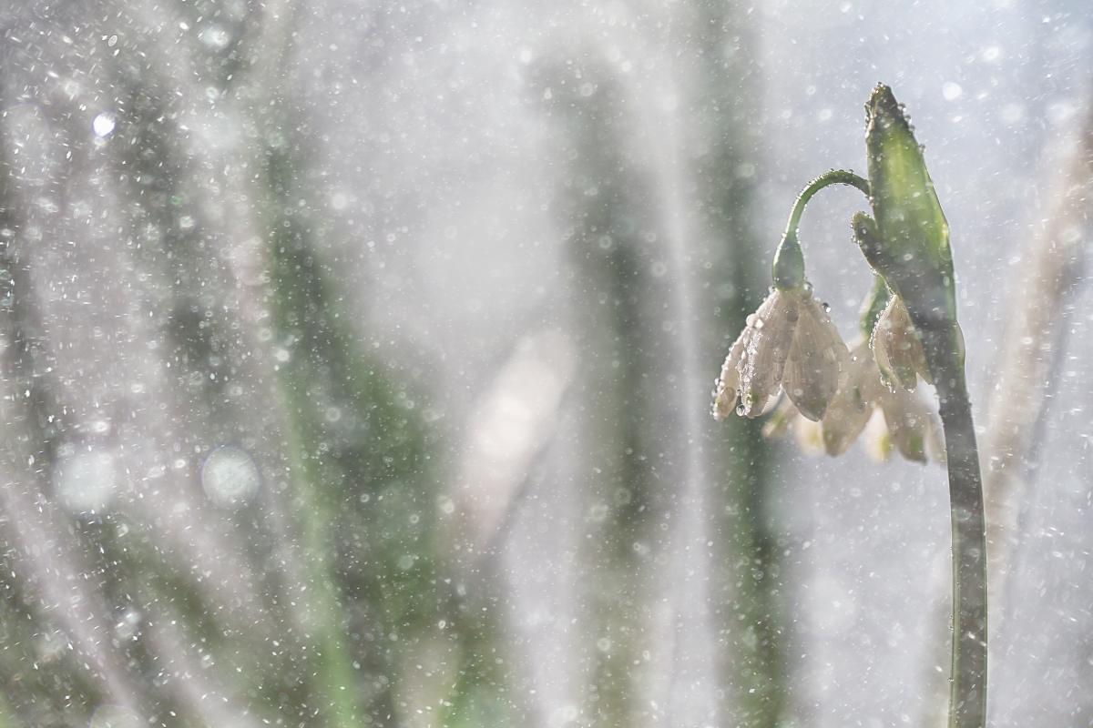На выходных возможен мокрый снег / Фото ua.depositphotos.com