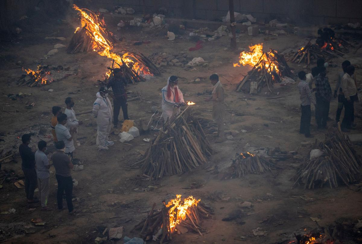 Не до конца сожженные тела умерших от COVID-19 доедают бродячие псы / фото REUTERS