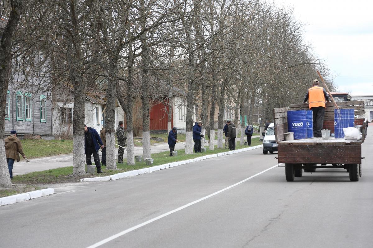 На улице Советской белили бордюры и деревья, «причесывали» газоны / фото УНИАН, Ковальчук Виктор