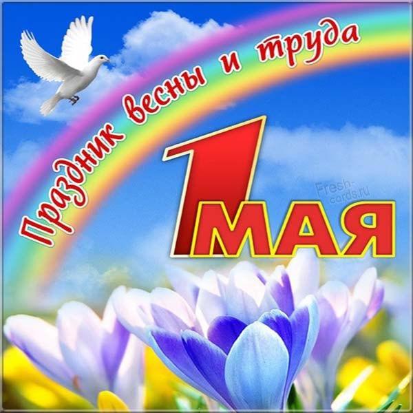 С 1 мая картинки / фото fresh-cards.ru