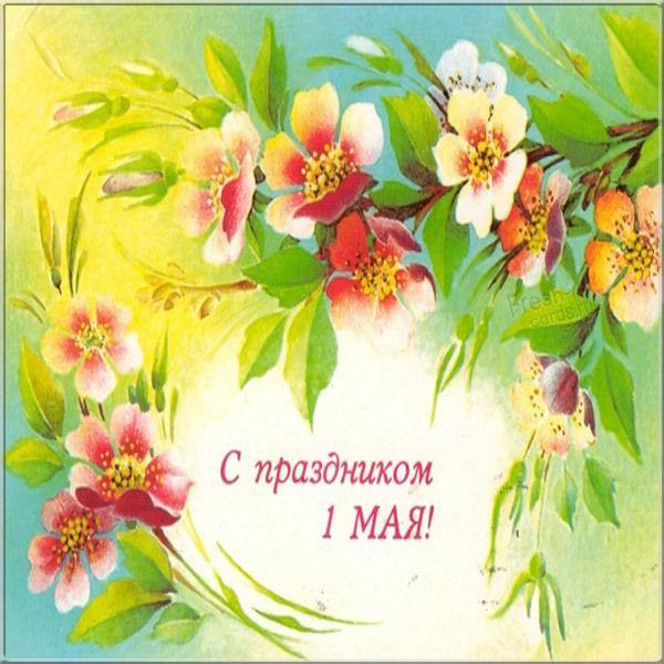 Привітання з Днем праці / фото fresh-cards.ru