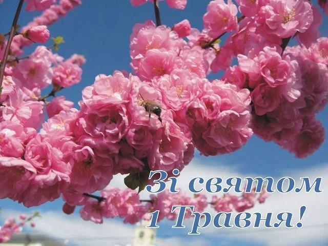 С 1 мая открытки / фото art-shop.com.ua