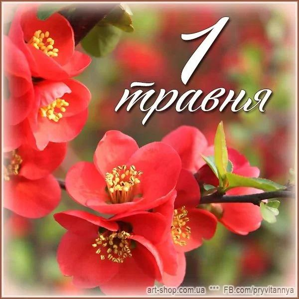 З 1 травня вірші / фото art-shop.com.ua