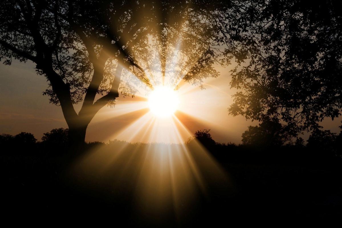 3 травня - Міжнародний День Сонця / фото Pexels