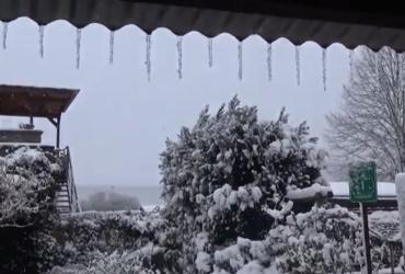 После аномально теплой погоды Брюссель засыпало снегом (видео)