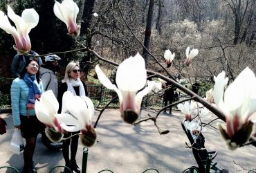 Квітень цього року в Києві був холоднішим за кліматичну норму
