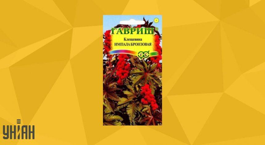 Клещевина обыкновенная фото упаковки